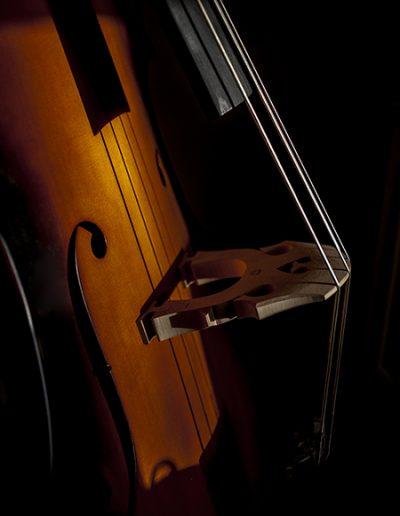Dbl Bass Prtrt 450